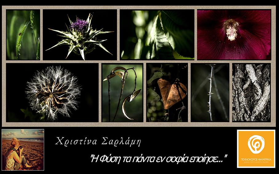 Χριστίνα Σαρλάμη - Η Φύση τα πάντα εν Σοφία εποίησε... - Τεχνοχώρος Φάμπρικα